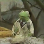 Reporter Kermit Muppets Most Wanted