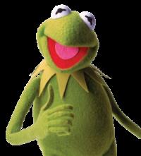 Kermit 11