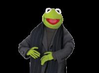 Kermit 13