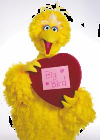 Big Bird 9