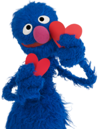 Grover 7