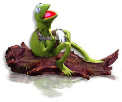 Kermit 03