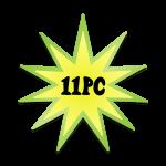 11PC Star 08