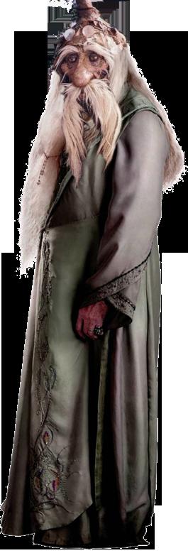 Dumbledore 01